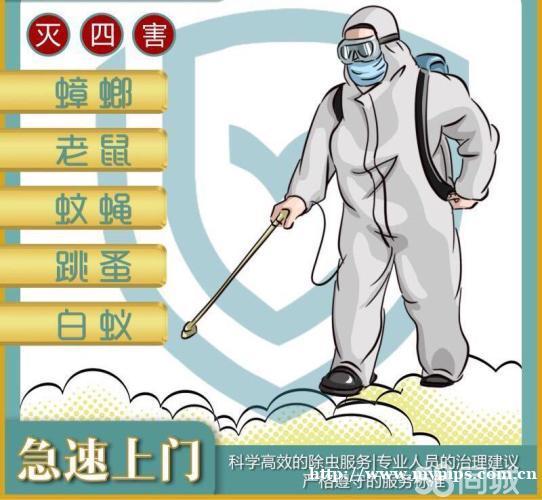 消毒 专注杀四害 白蚁防治,灭蟑螂 灭鼠 除甲醛